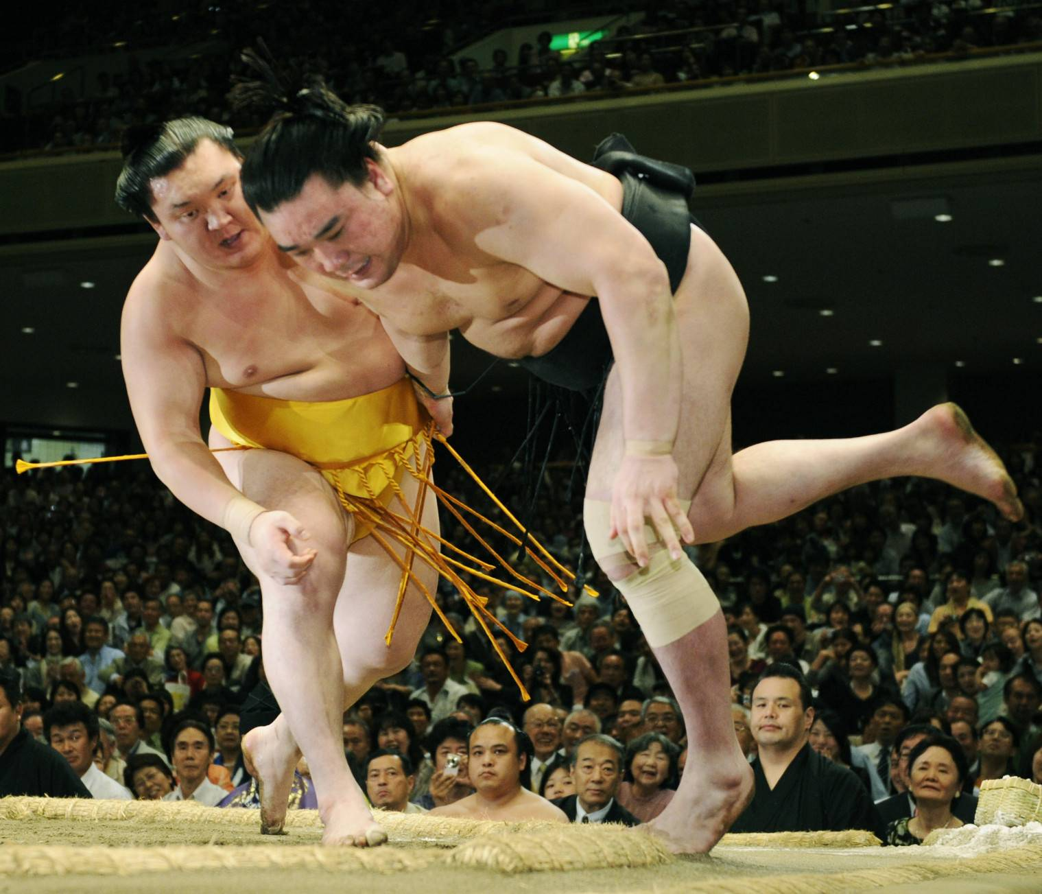 Long a student of the sport, Hakuho wore a gold mawashi belt inspired by Wajima after matching the former yokozuna with a 14th title at the 2010 Summer Basho. | KYODO